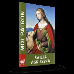 Arka przymierza DVD