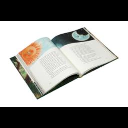 Ikona + futerał - Matka Boża Nieustającej Pomocy