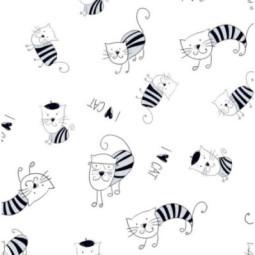 Święty Piotr